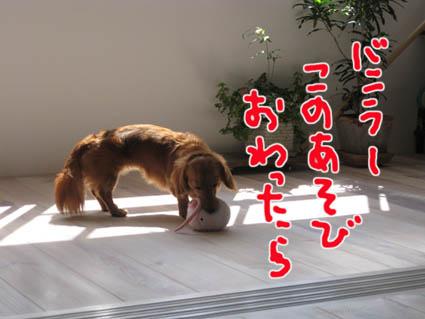 blog 09092501