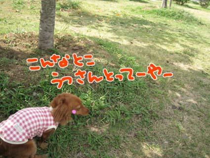 blog 09092907