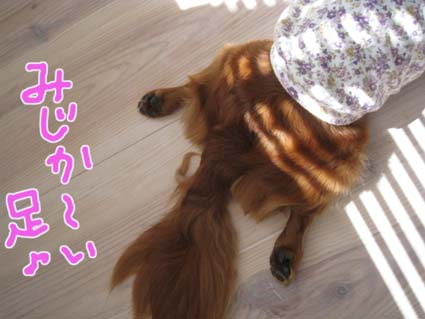 blog 09093001