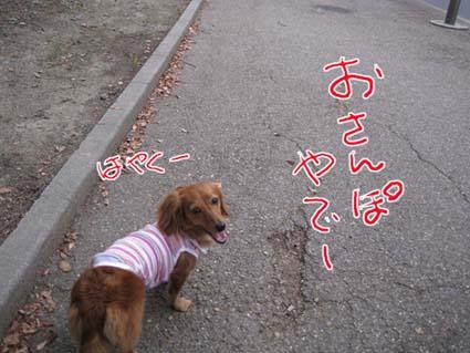 blog 09100201