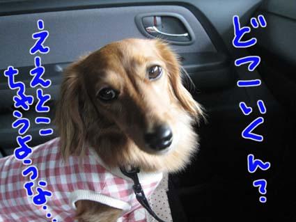 blog 09100507