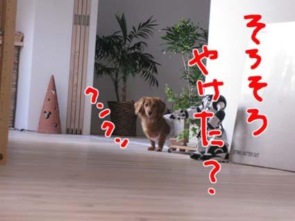 blog 09100501