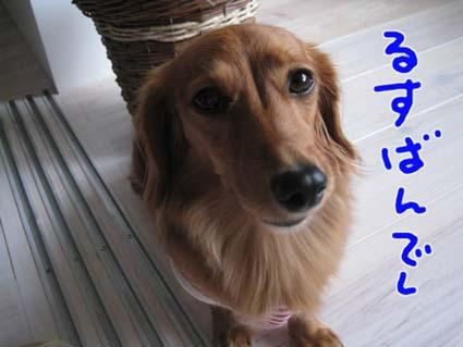 blog 09100601