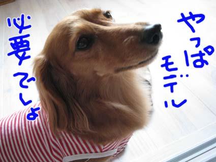 blog 09100701