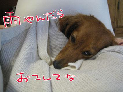 blog 09100801