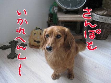 blog 09100804