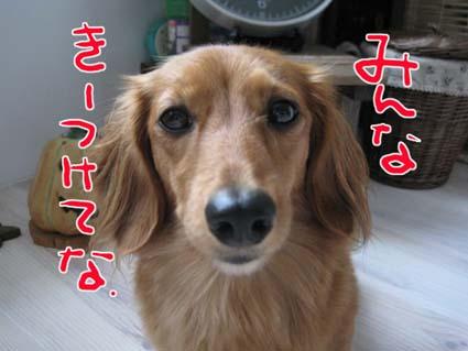 blog 09100805
