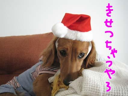 blog 09100902