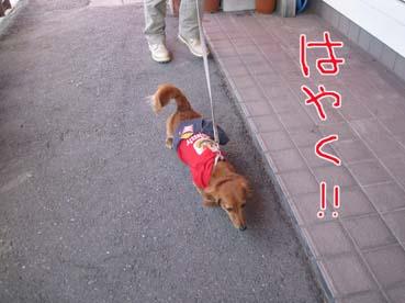 blog 09101205