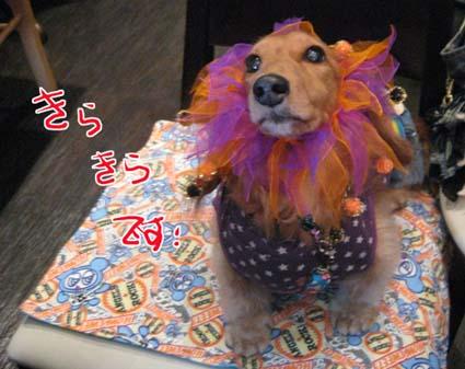 blog 09101302