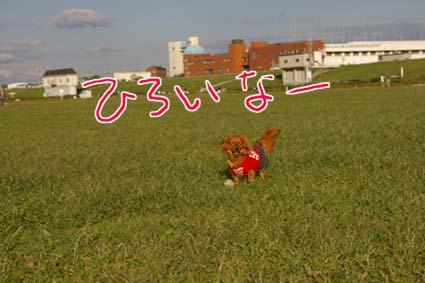 blog 09101410