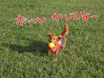 blog 09101402