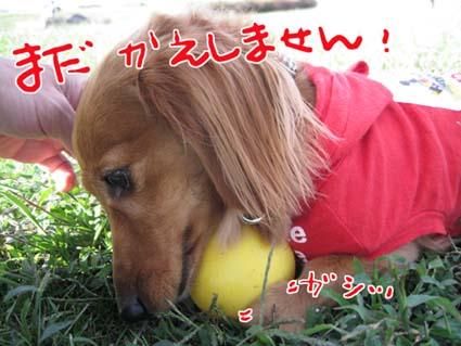 blog 09101403