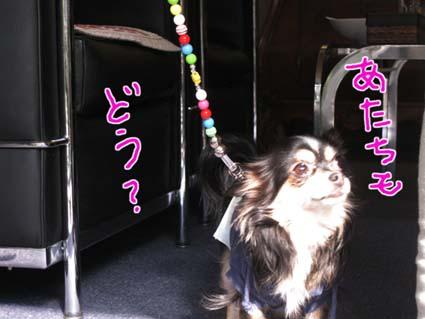 blog 09101602