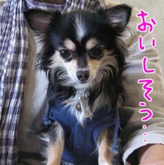 blog 09101604