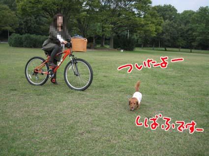 blog 09101906