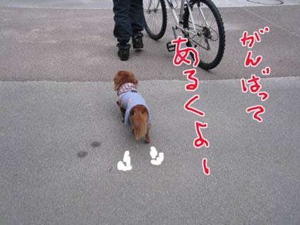 blog 09103001