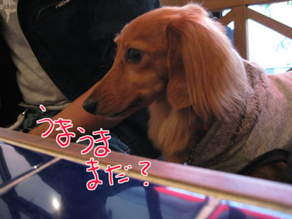 blog 09110203