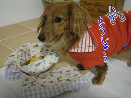 blog 09110707