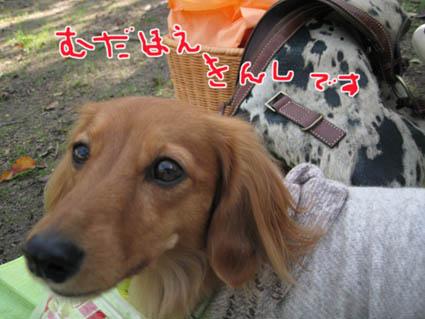 blog 09110906