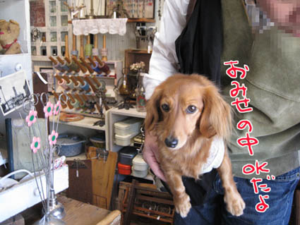 blog 09111202