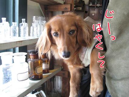 blog 09111203