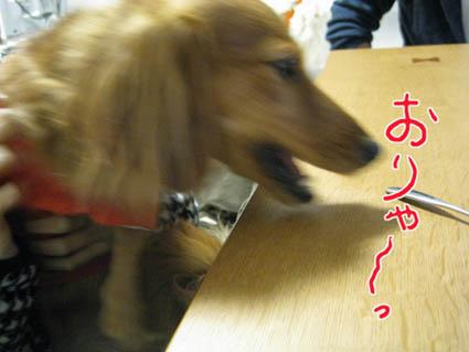 blog 09111801