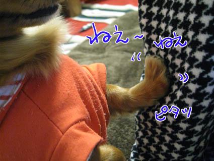 blog 09111805