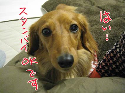 blog 09111804