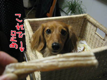 blog 09112305