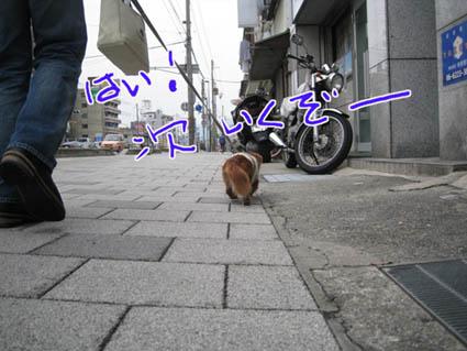 blog 09112606