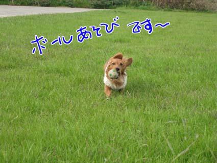 blog 09120203
