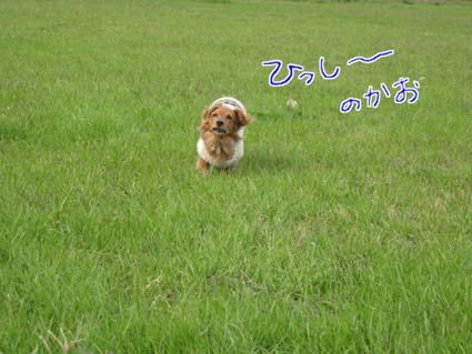 blog 09120201