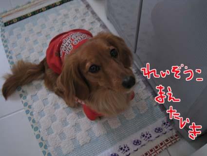 blog 09121902