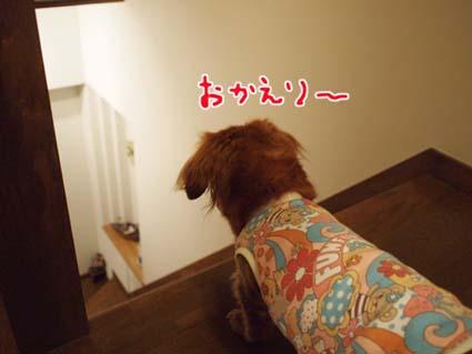 blog 10022506
