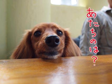 blog 10051001