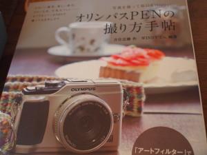 vanilla11080505.jpg