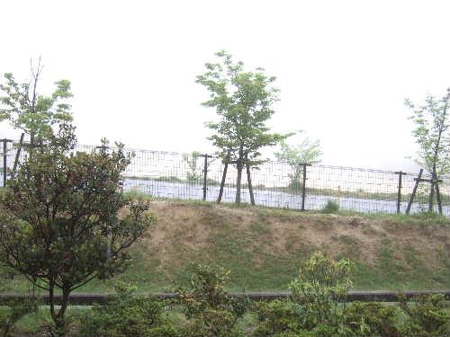 2010_0507_2.jpg