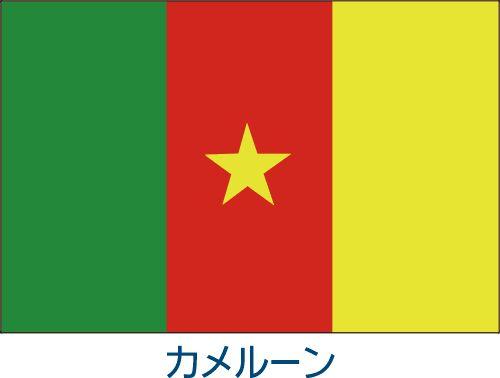 カメルーン国旗
