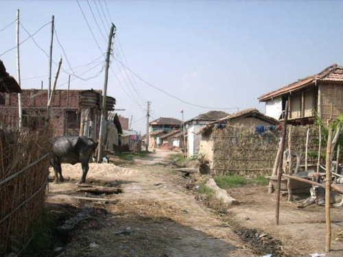 Shiraha village