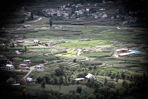Makwanpur District  Rice Firm