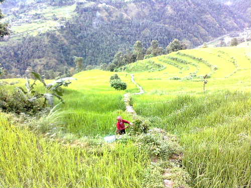 Makwanpur Village3