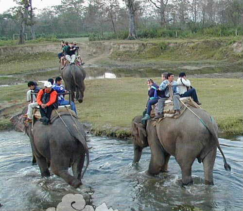Parsa wildlife reserve3