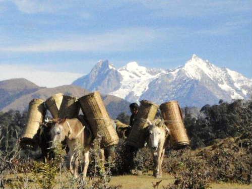 Gorkha district  village