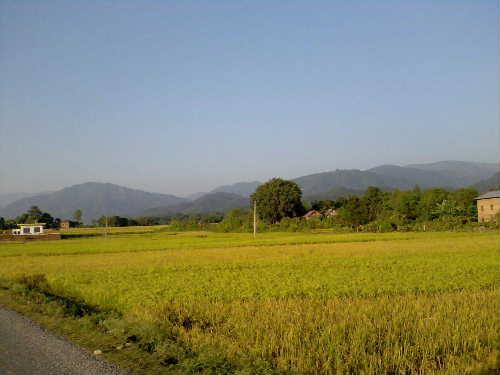 Salyan view3