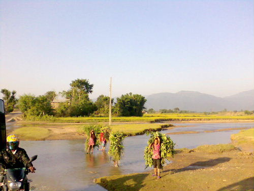 Salyan view6
