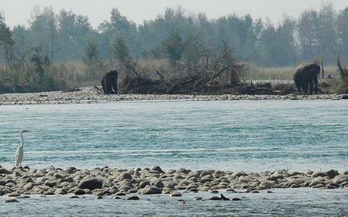 Bardiya view1