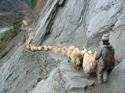 Surkhet view6