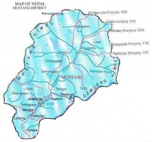 mustang_district2.jpg