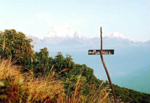 nepal104.jpg